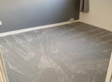 carpets 1